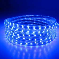 SMD 5050 AC 220V 60 LED - waterproof flexible Led strip light & power plug