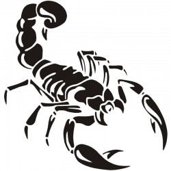 3D scorpion - car sticker
